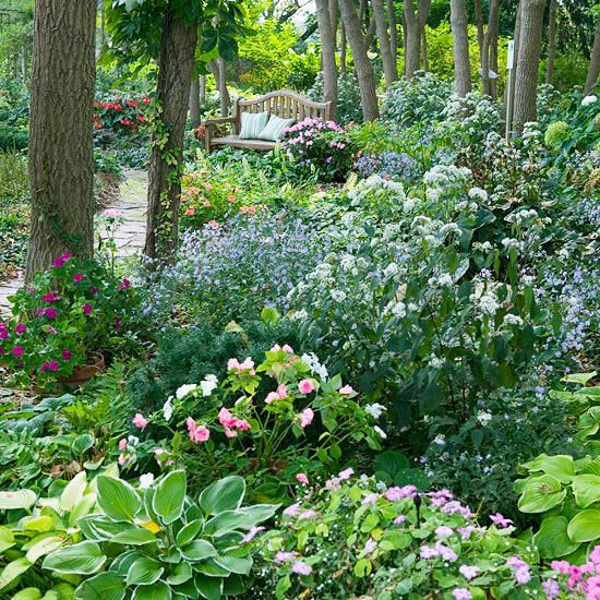 Stunning Shade Garden Design Ideas is part of Shade garden Bench - Enjoy a bold, beautiful color in the shady corners of your yard with our garden design tips!