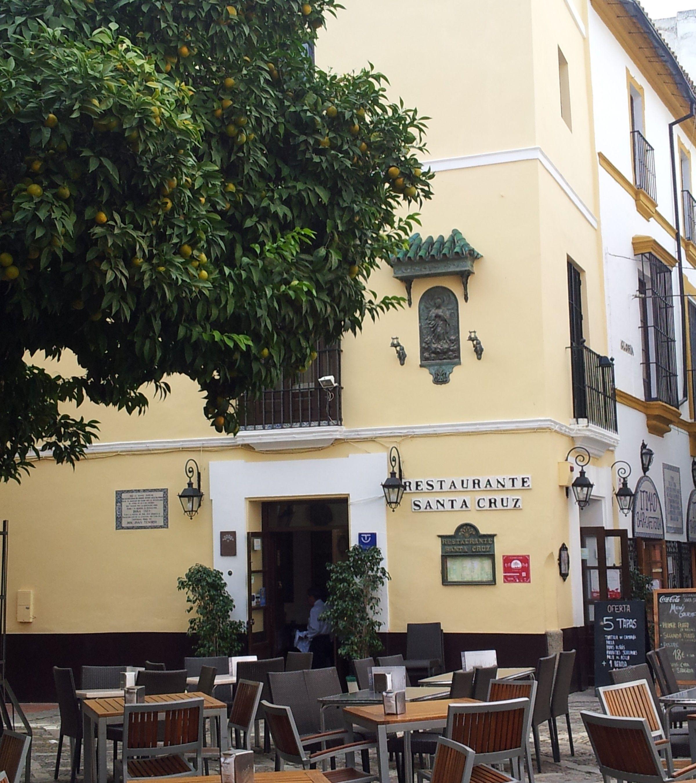 Barrio de Santa Cruz Casas, Sevilla, Estilo en el hogar