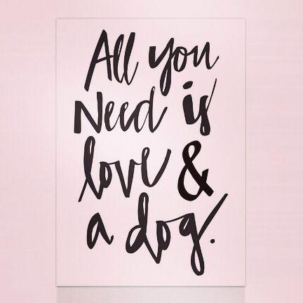 Todo lo que necesitas es amor y tu perro. Súmate en Facebook, Twitter e Instagram: ENIDIOMAS  #ApprendsLeFrancais #LearnEnglish #LerneDeutsch #Aprendeportugues   #Imparal'Italiano