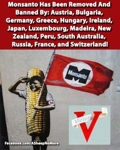 Monsanto Banned But The Us Fda Finds Them Safe And You Wonder Why