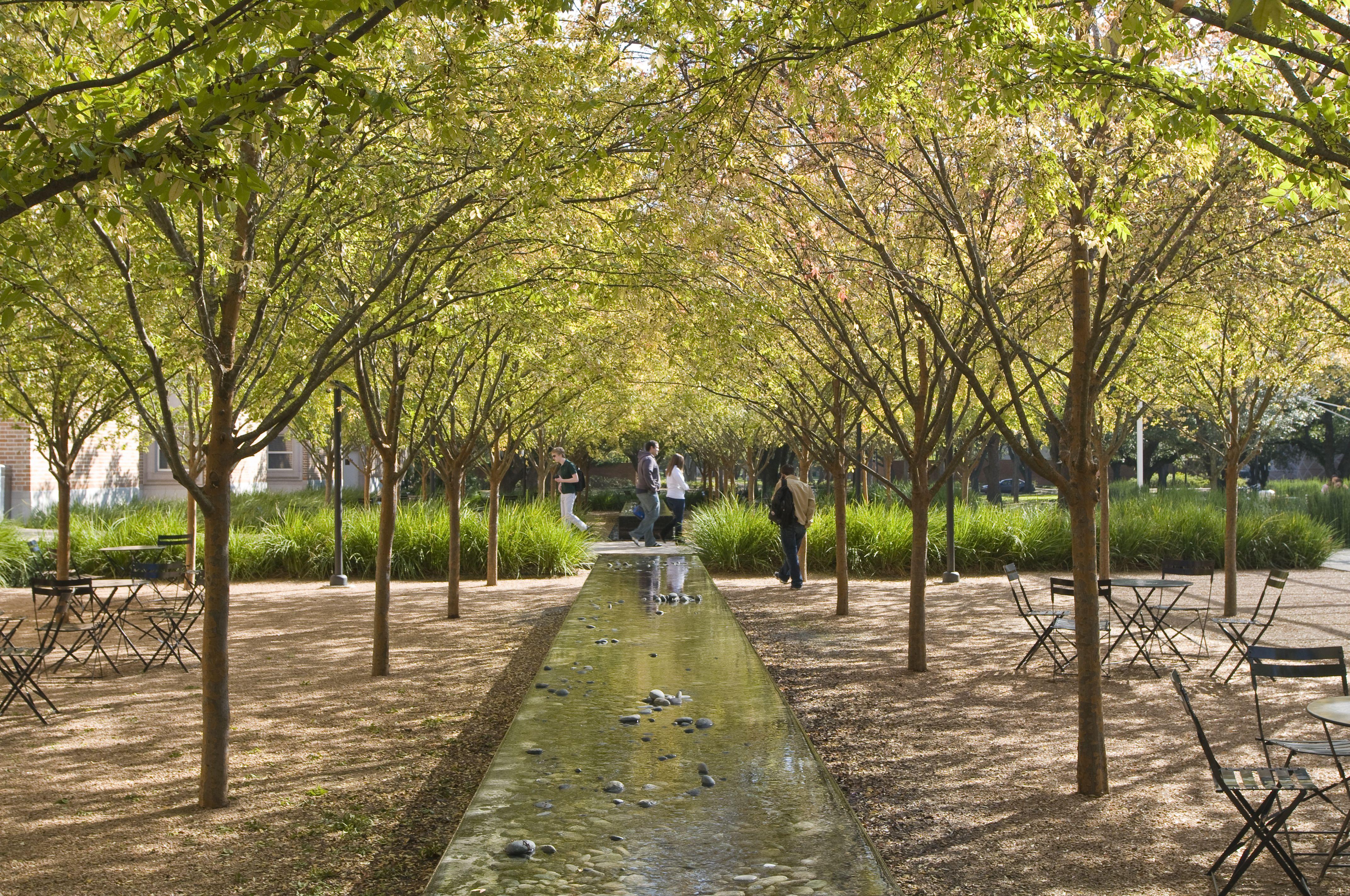 brochstein pavilion @ rice university | landscape architecture ...