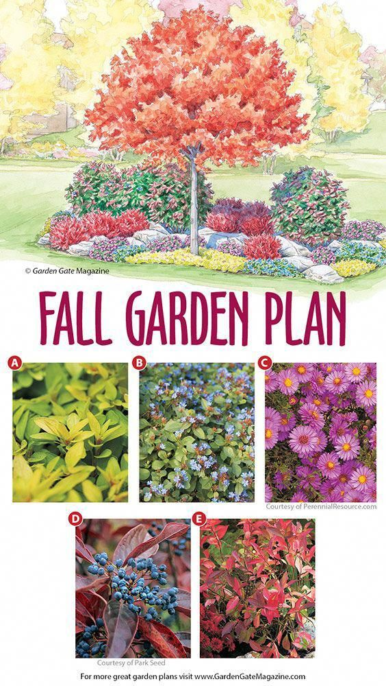 organic gardening magazine with images autumn garden 54 Without Planning In A Beautiful Gardening id=84432