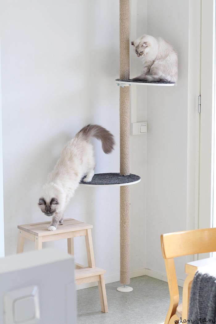 Kiipeilypuu I Ikea Stolmen Diy Cat Tree