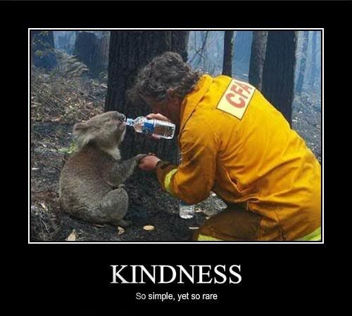 Quotes About Kindness To Animals Quotesgram By Quotesgram Words