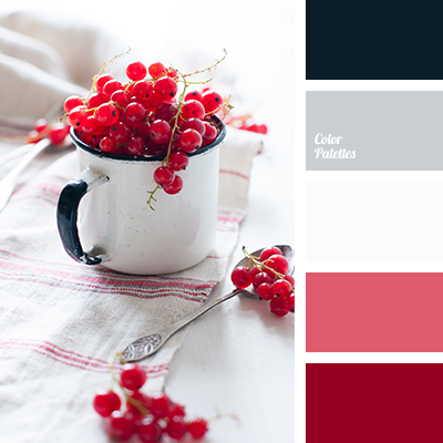 black color, burgundy color, contrasting red color, dark gray, gray color, house color selection, new year color scheme, new year color scheme selection, New Year palette, pink color, scarlet color, silver color.