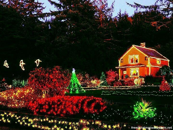 Nice lights!!!! Christmas Pinterest Nice
