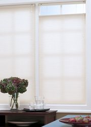 1 2 Single Cell Light Filtering Shades With Images Shades Blinds Light Filtering Shades Light Filtering Cellular Shades