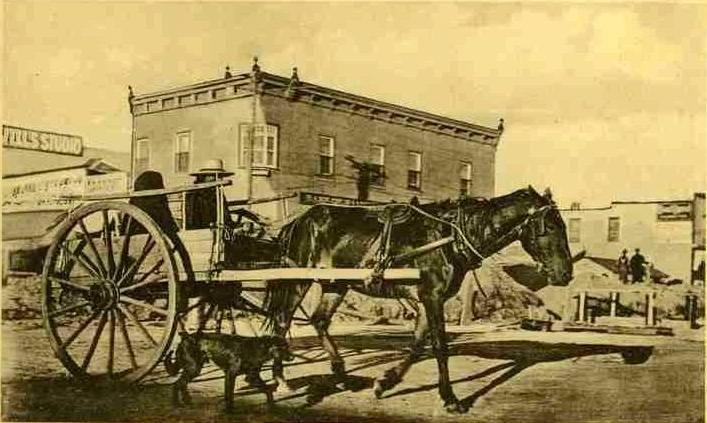 Red River cart & dog, Saskatoon, SK, 1909