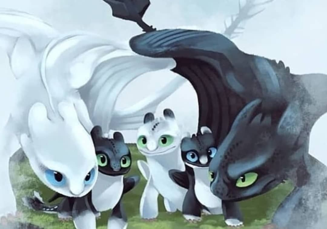 Omg How Drawthis How Train Your Dragon How To Train Dragon How To Train Your Dragon