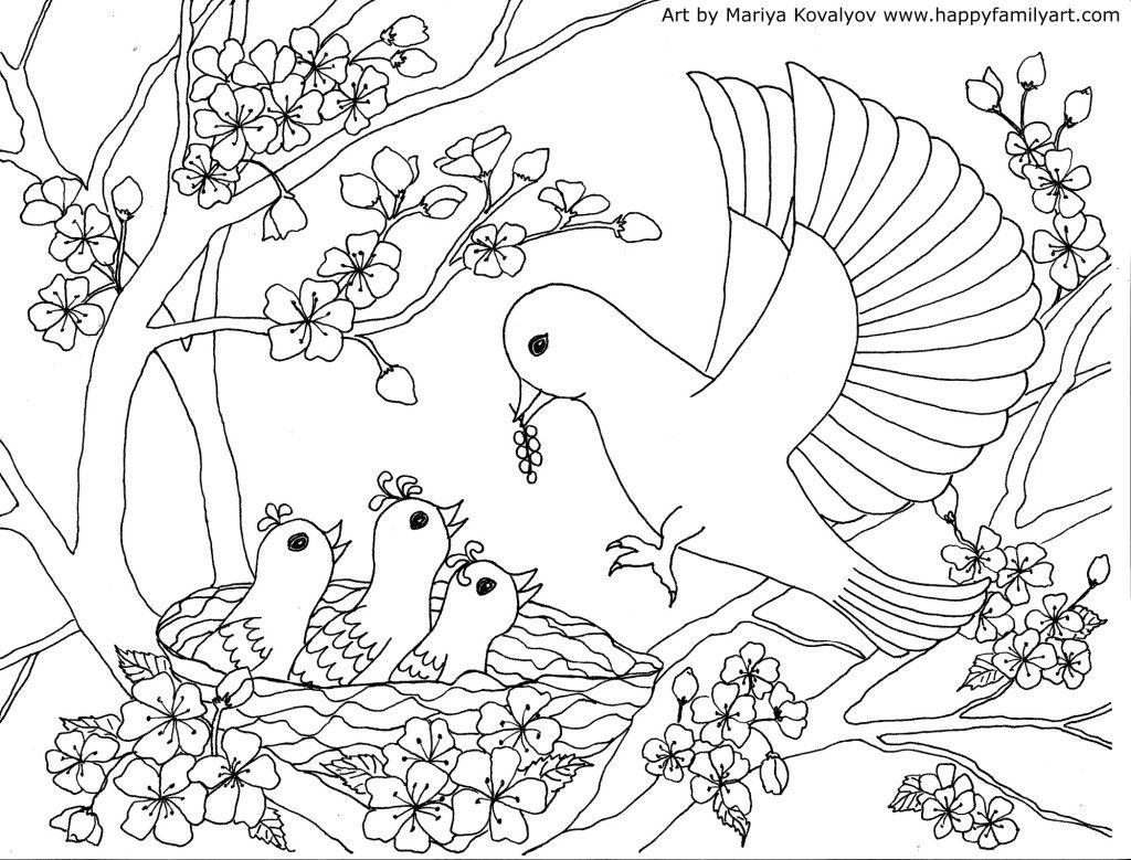 Birds Coloring Page - | Pinterest | Adult coloring, Patterns and Craft
