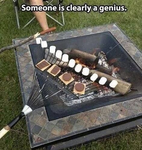 genius......or fat?