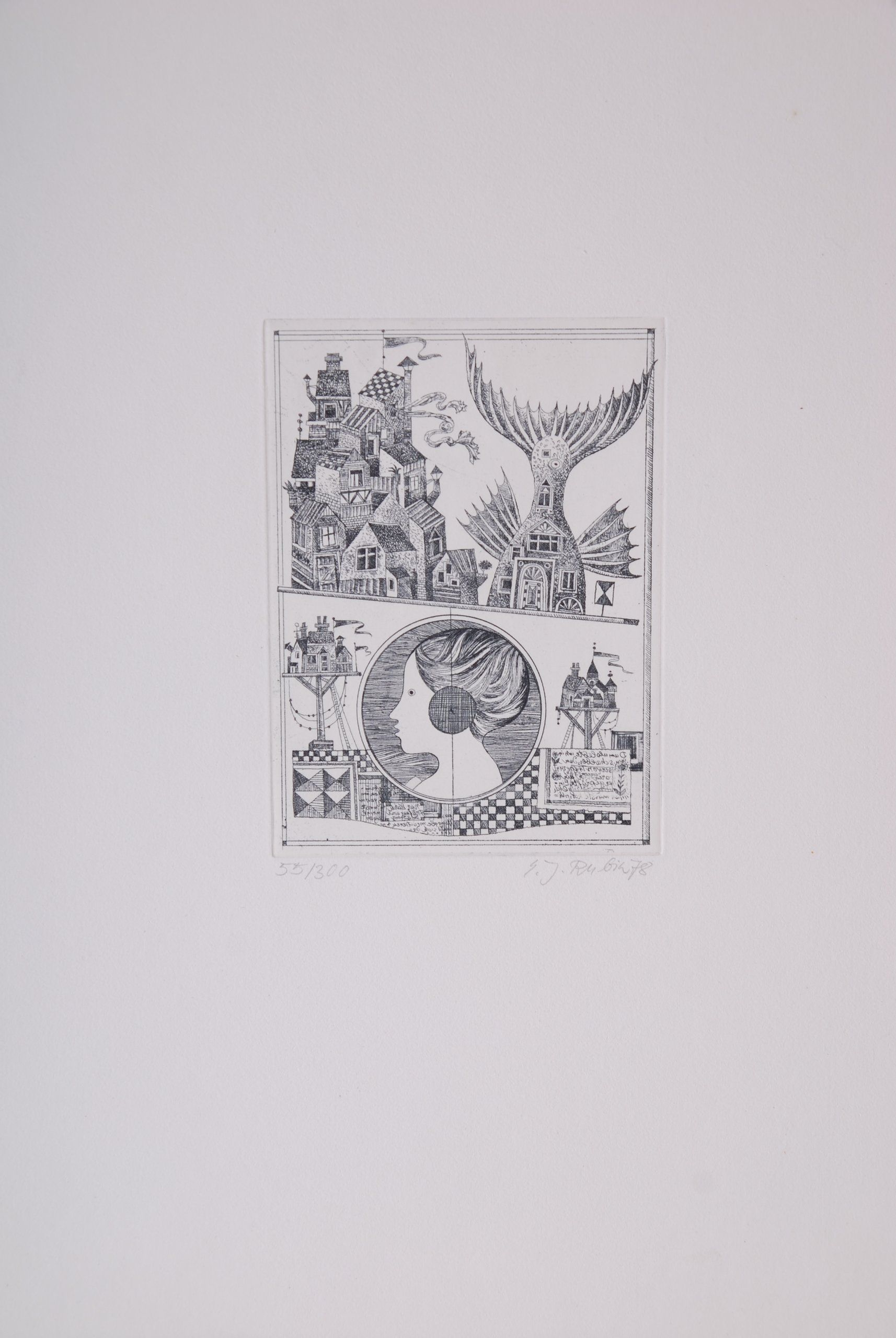 Eva Johanna Rubin (Mappe) Surrealistisch /Radierung: Amazon.de ...