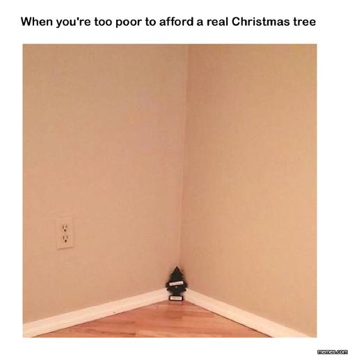 Pin By Jennifer Grogg On Humor Real Christmas Tree Christmas Tree Christmas Jokes