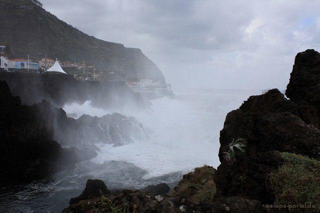 Die Natur im Visier in #Madeiras Nationalparks. Erleben, erkunden, bereisen, das tolle Leben eines #Reisebloggers http://wellness-bummler.de/madeiras-nationalparks-erkunden/