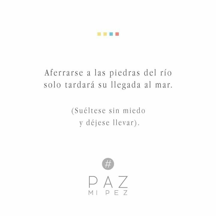 Paz Mi Pez Letras Frases Frases Y Poemas Y Frases