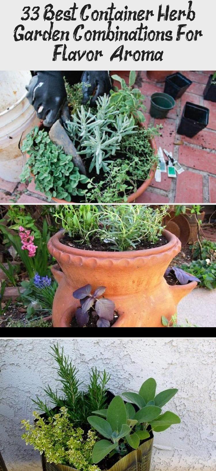 33 Best Container Herb Garden Combinations For Flavor Aroma Container Herb Garden Herbal Tea Garden Herb Garden Pots