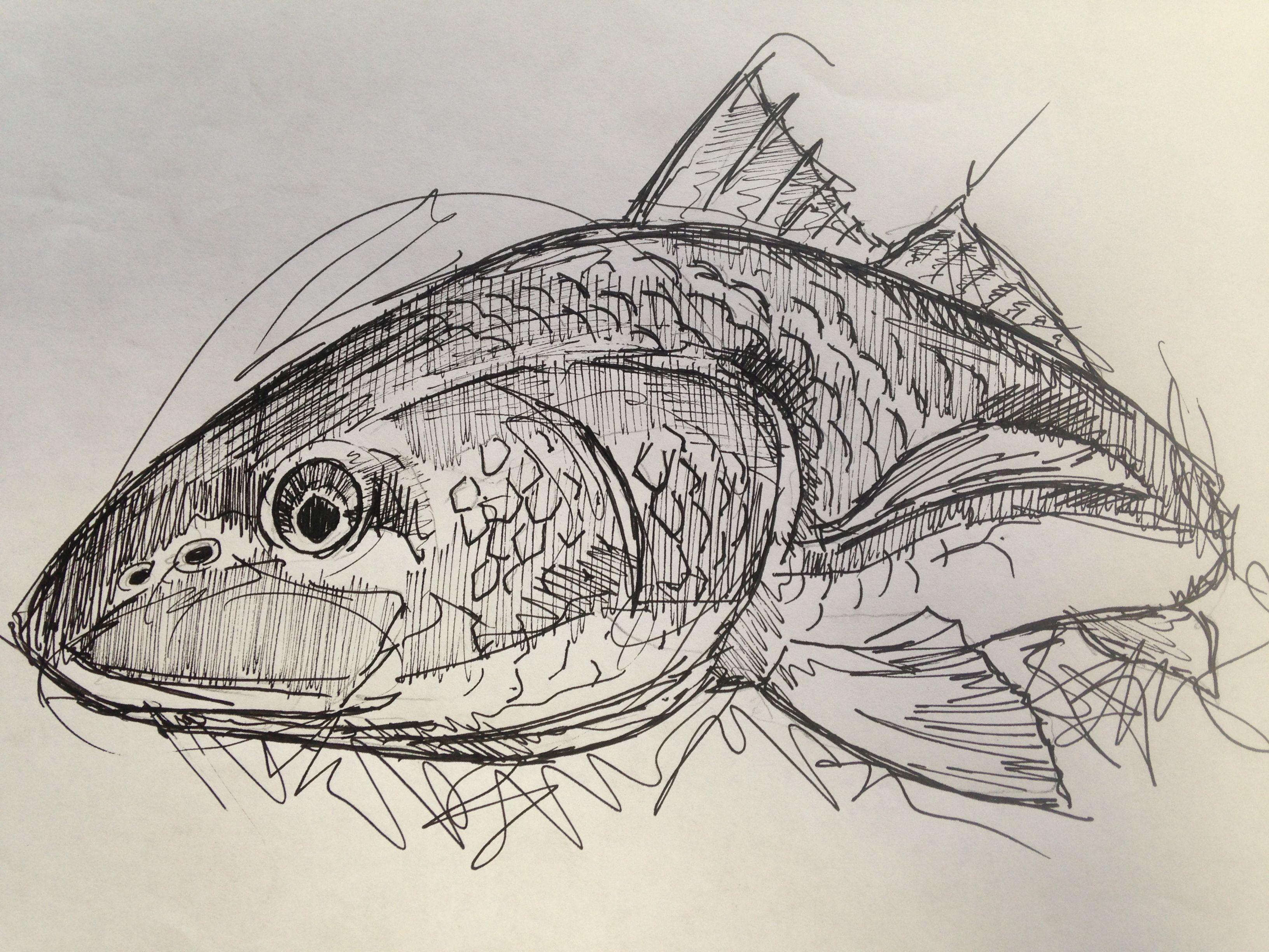 underwater sketches - Pesquisa Google