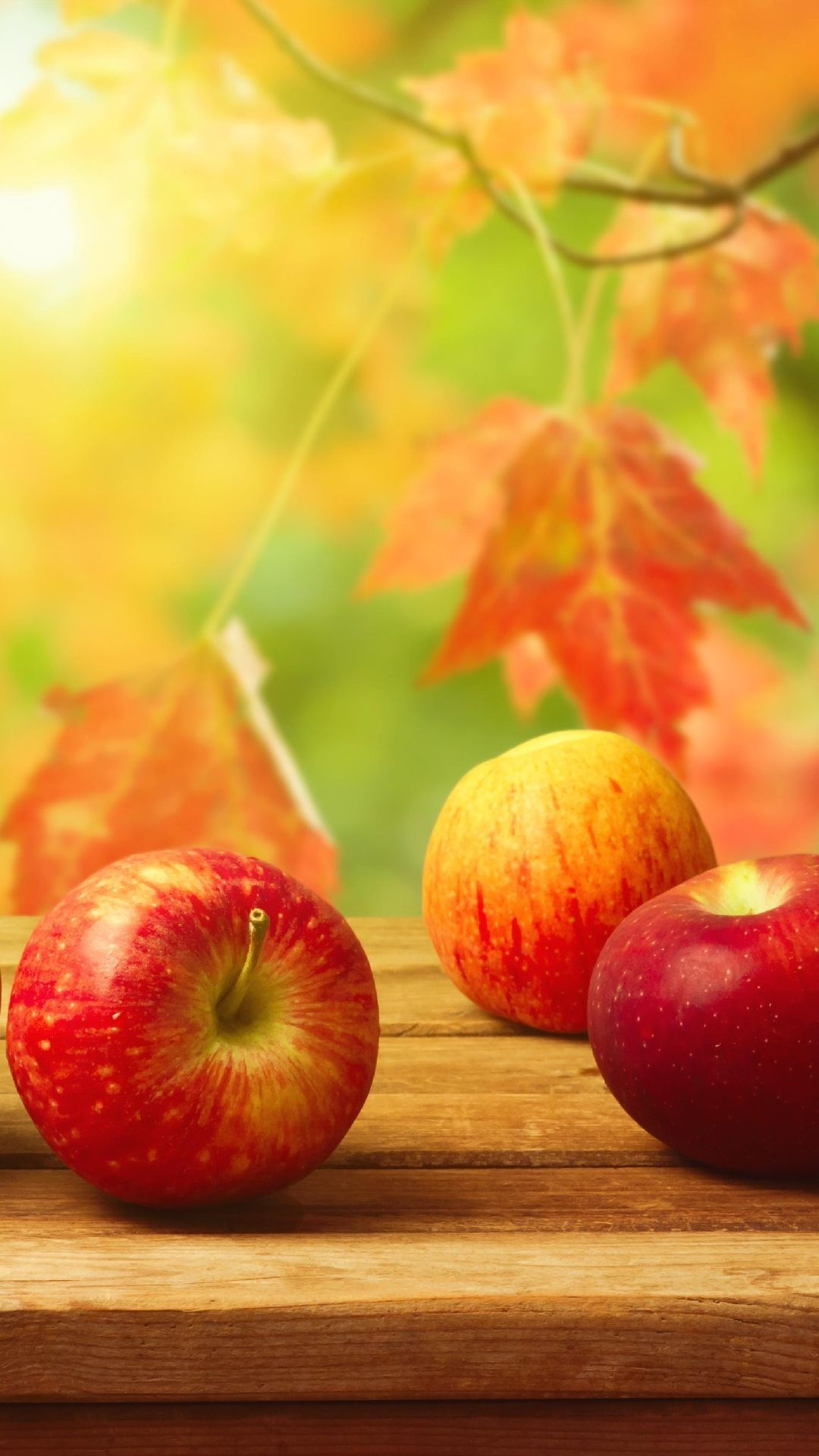 Autumn Apples Fall Apples Fall Wallpaper Fruit Photography
