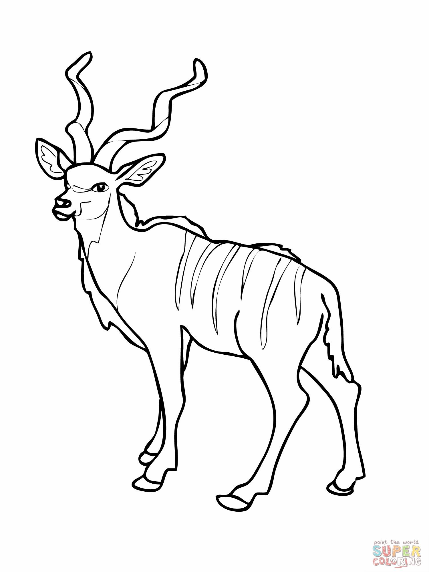 Letter K / Kudu   Animal Coloring Page