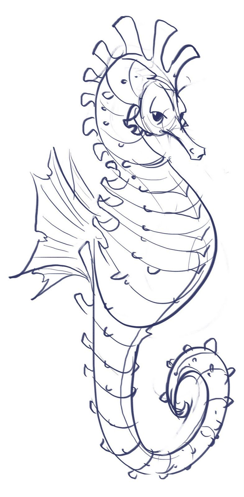 Zentangle Seahorse Seahorse Sketch Projects To Try In