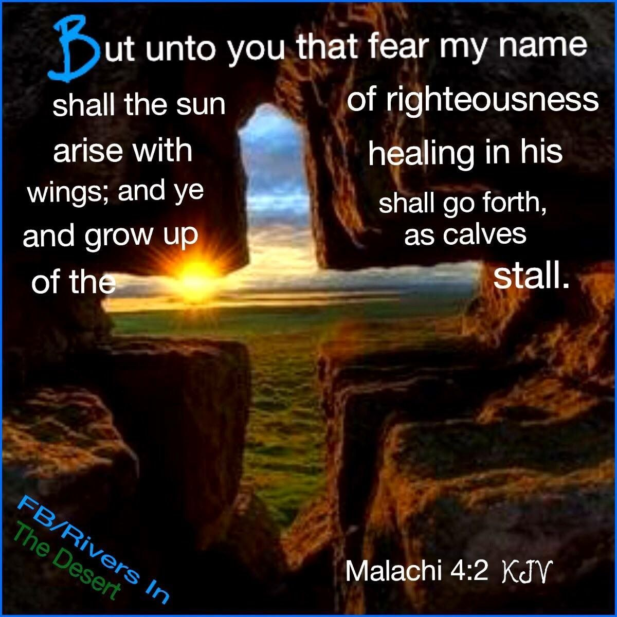Pin on Malachi 4:2