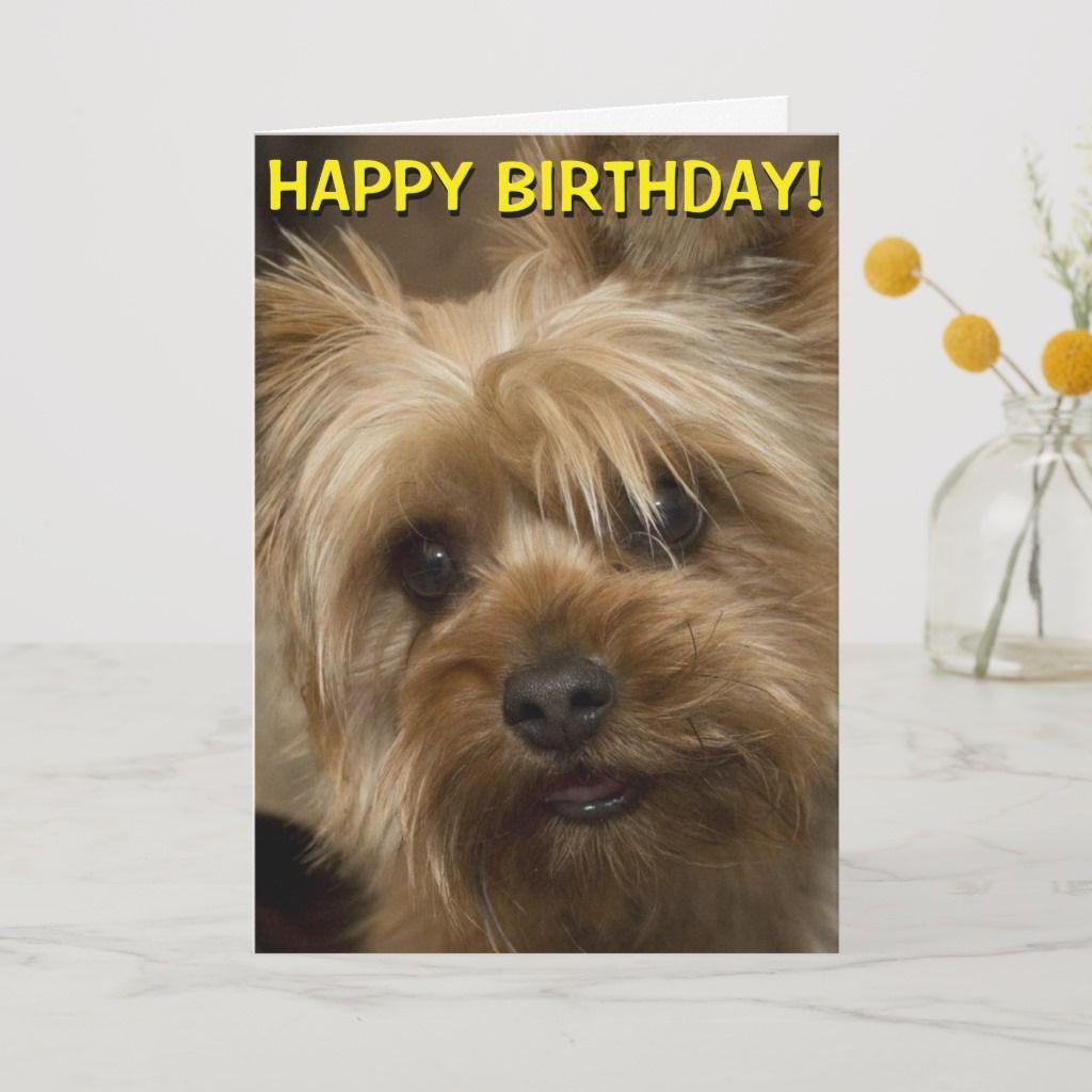 Cute Yorkie Birthday Card Zazzle Com In 2021 Yorkie Dog Poo Bags Yorkshire Terrier