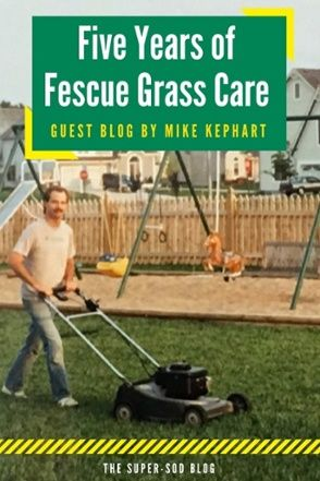 Advice From A Lawn Care Nut Growing Tall Fescue Grass For The First Time Fescue Grass Care Fescue Grass Grass Care