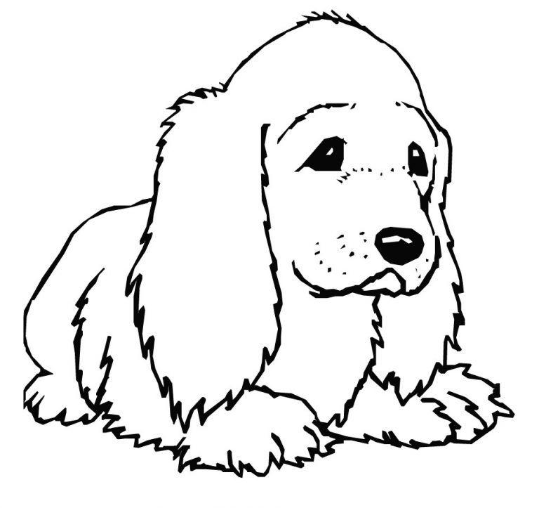 Planse De Colorat Cu Caini Con Imagini Cu Animale Domestice De Colorat E Planse 20desene 20de 20colorat 2 Dog Coloring Page Puppy Coloring Pages Coloring Pages