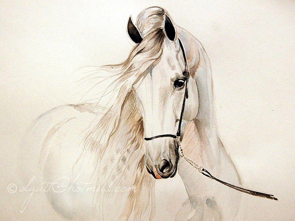 Amazing Wallpaper Horse Watercolor - f96f2d3cc43dfc1c0b9bd7120ddf88ec  Perfect Image Reference_236013.jpg