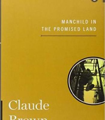 Manchild In The Promised Land PDF Biography Pinterest