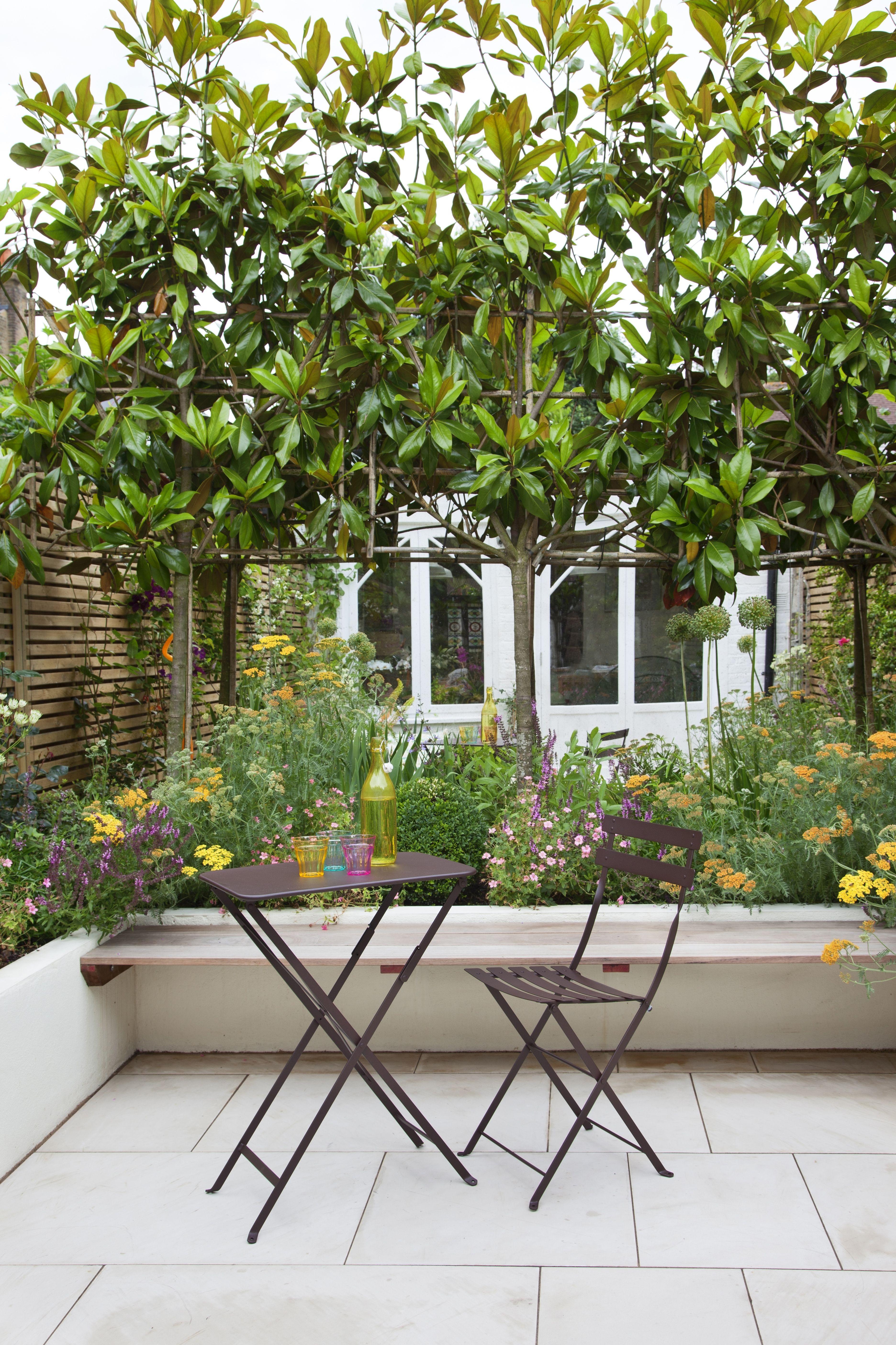 A London Courtyard Garden Designed By Joanna Archer Pleached Magnolia Trees Soft Perennial Plantin Garden Design Small Courtyard Gardens Garden Design London