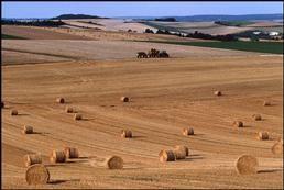 FRA. Champagne-Ardenne region. Ardennes department. 1999.