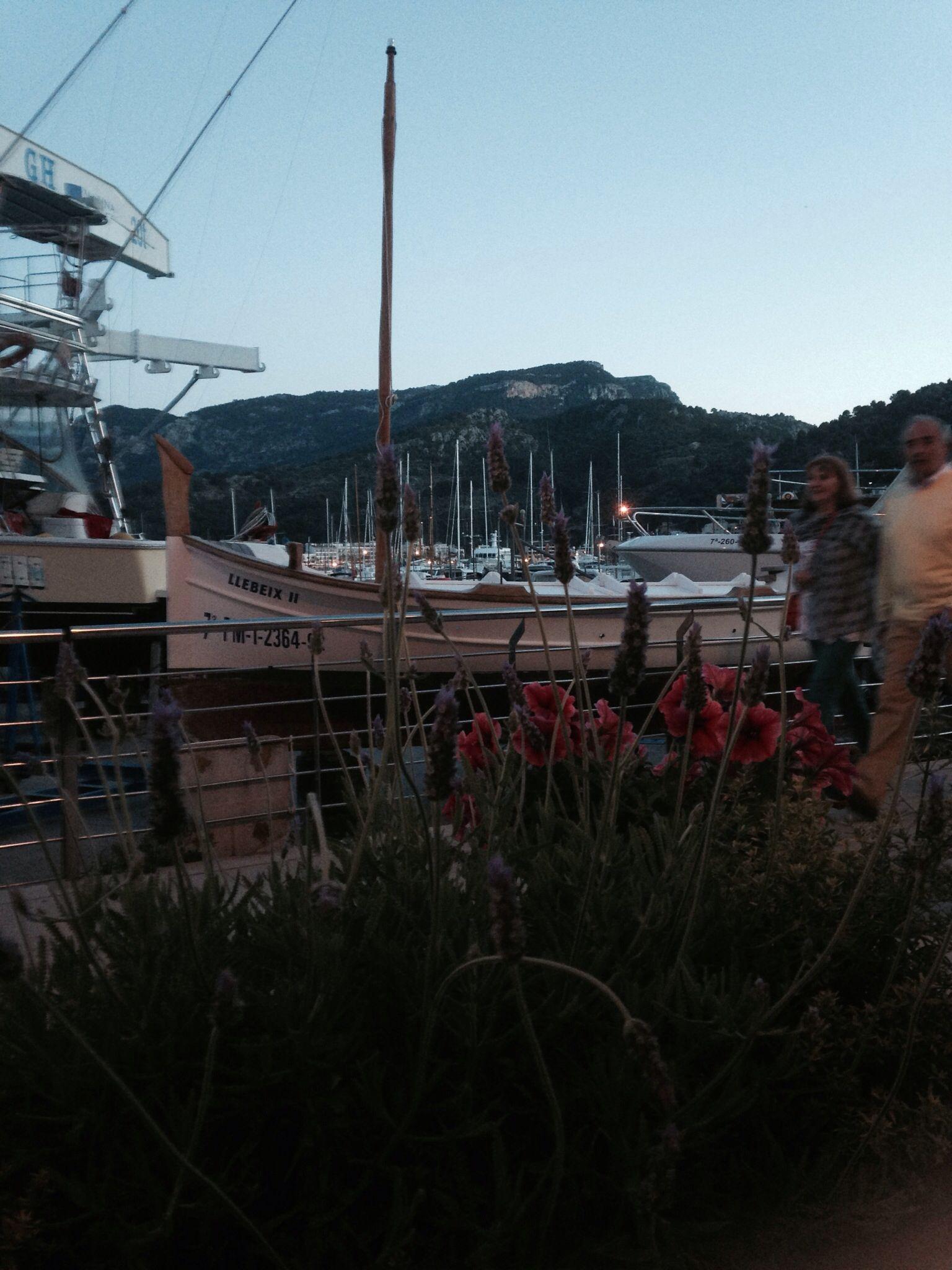 Port Soller sundown