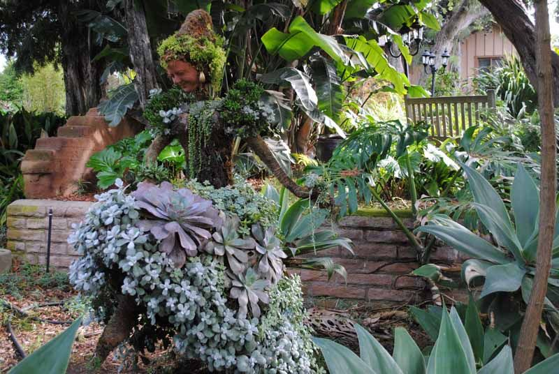 f97079ebb1d273b7136626dcc8b26a2a - San Diego Botanical Gardens Free Tuesday
