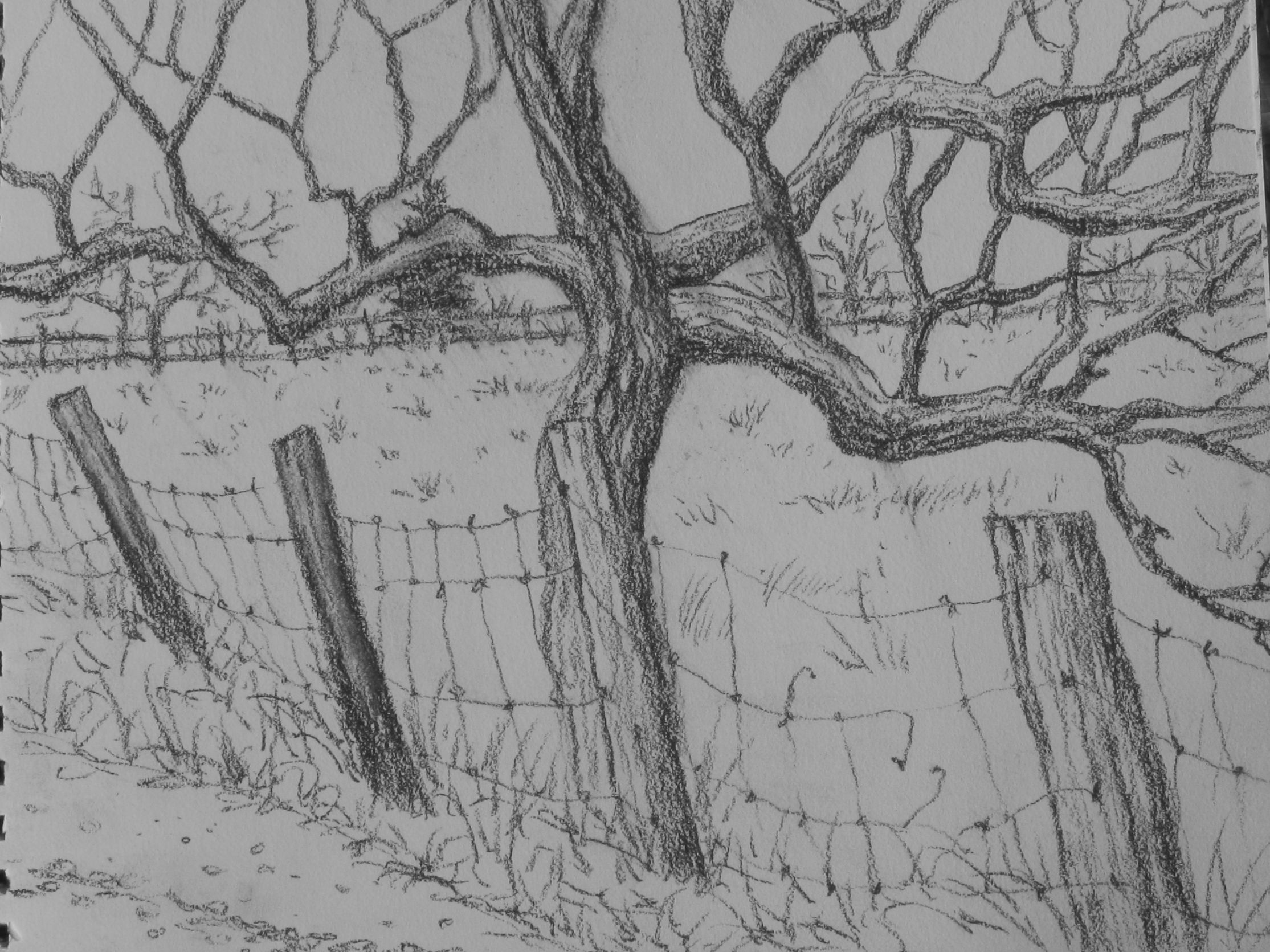 Sketching Around Town Landscape Drawing Easy Charcoal Drawing Easy Drawings