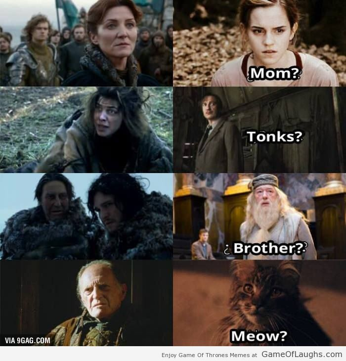 The Relationship Between Game Of Thrones And Harry Potter Harry Potter Memes Hilarious Harry Potter Funny Got Memes