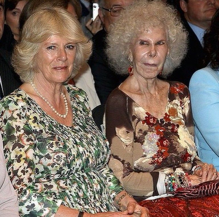 Camilla, Duchess of Cornwall and the Duchess of Alba. | Camilla ...
