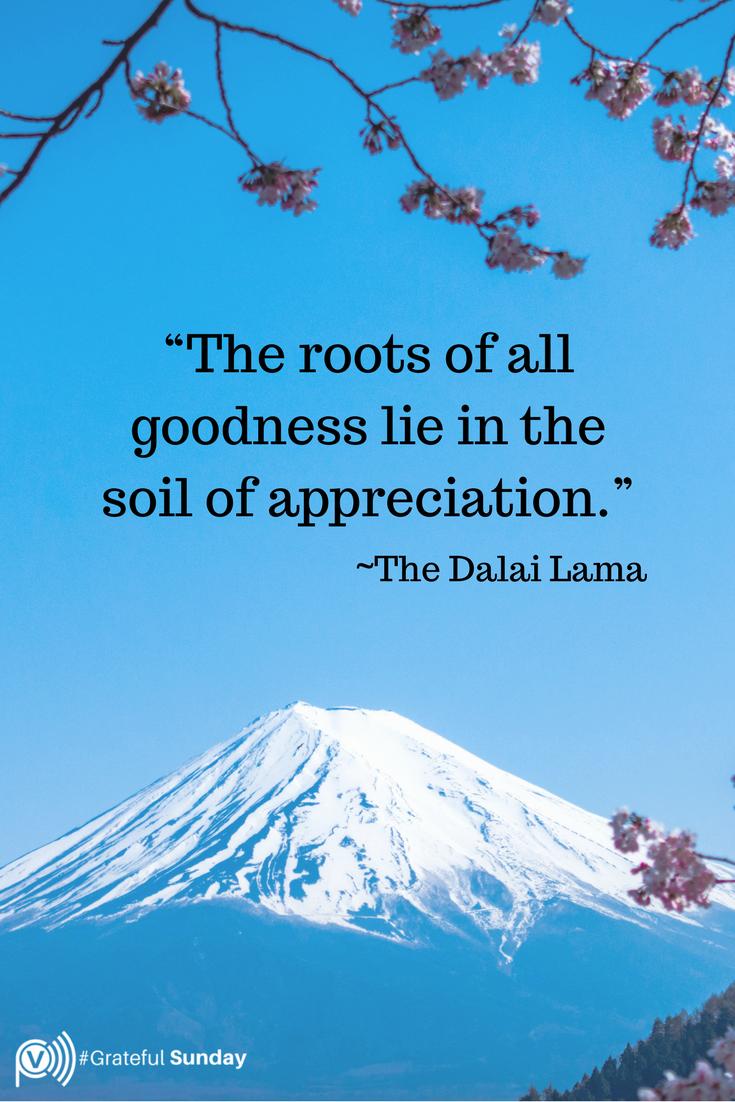 Dalai Lama Quotes About Gratitude