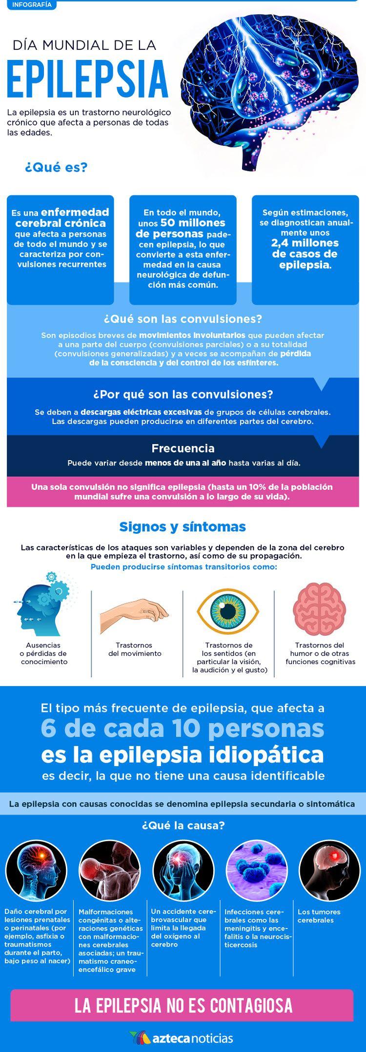 Resultado de imagen para Epilepsia infografia