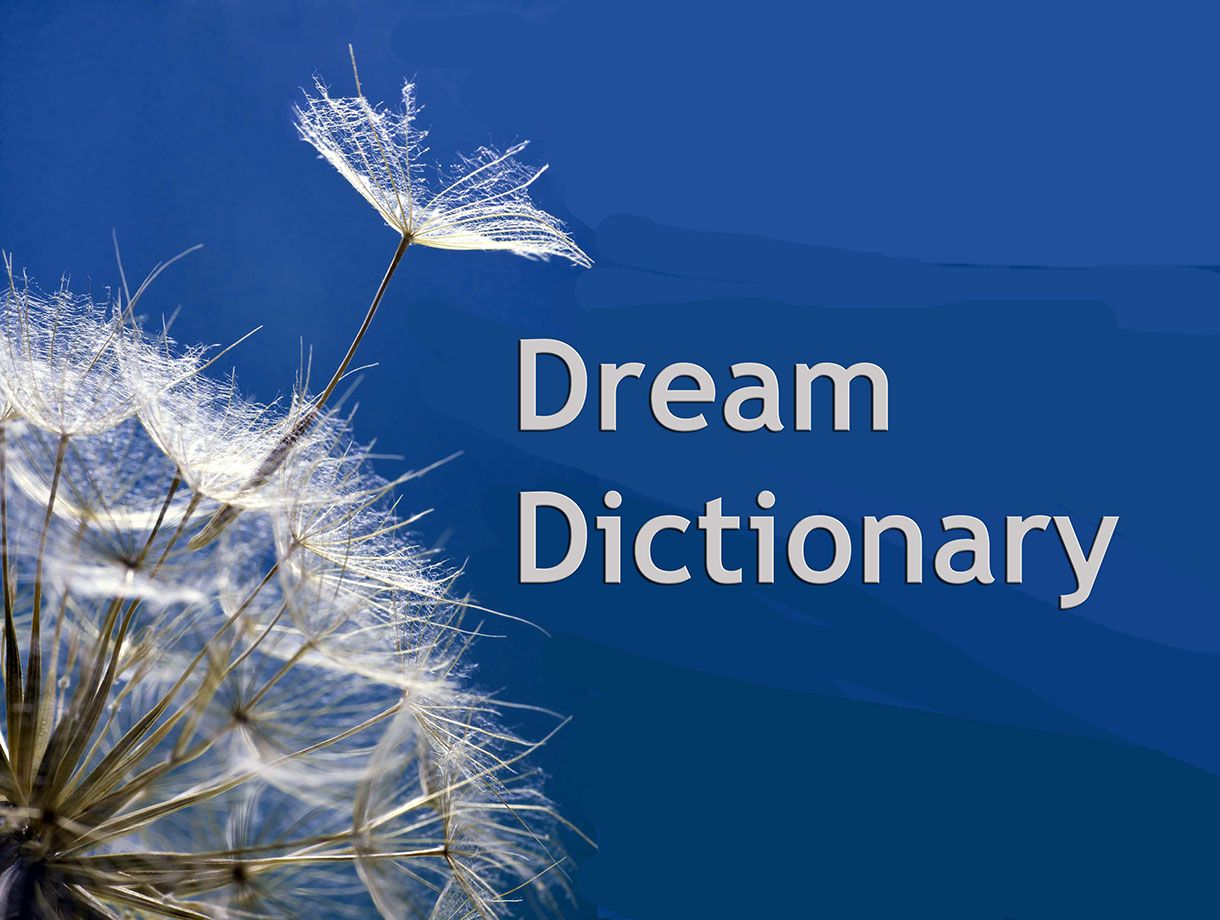Dream interpretation 49