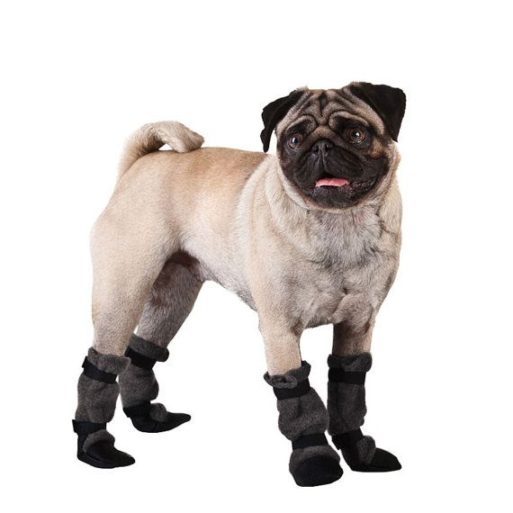 Dogs pug human Walking Shoes for Women athletic Wear-Resistant Running Shoes
