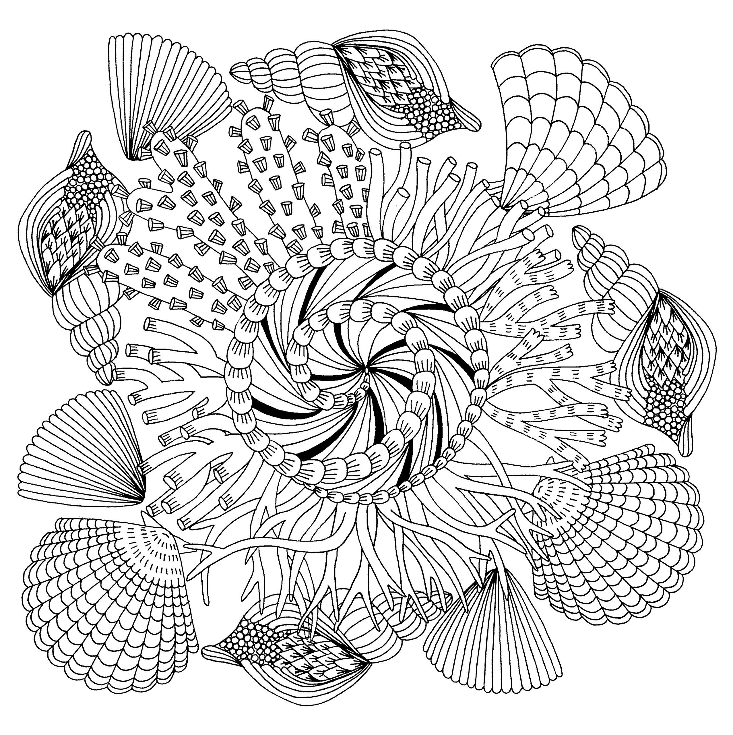 Pin On Coloring Pages To Print Underwater [ 2560 x 2554 Pixel ]