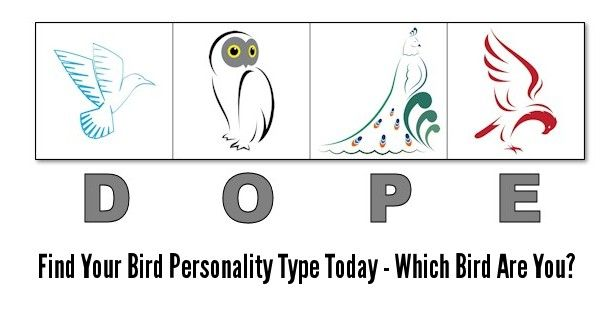 graphic about Free Printable Personality Test identified as Pin upon Management