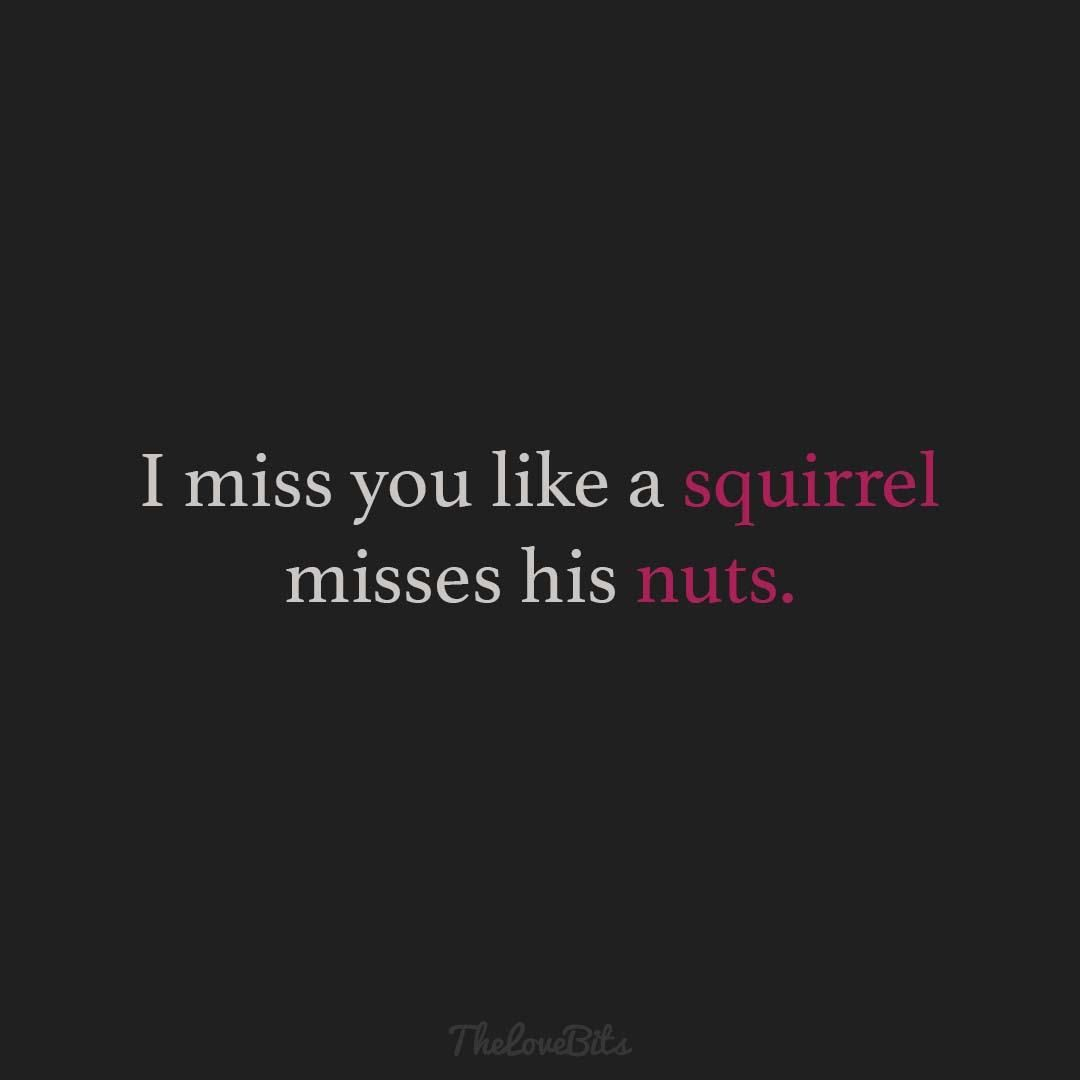 50 Funny Love Quotes And Sayings With Pictures Thelovebits Funny Miss You Quotes Miss You Funny Missing You Quotes For Him