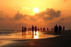 We're just walking each other Home  ~  Ram Das ~