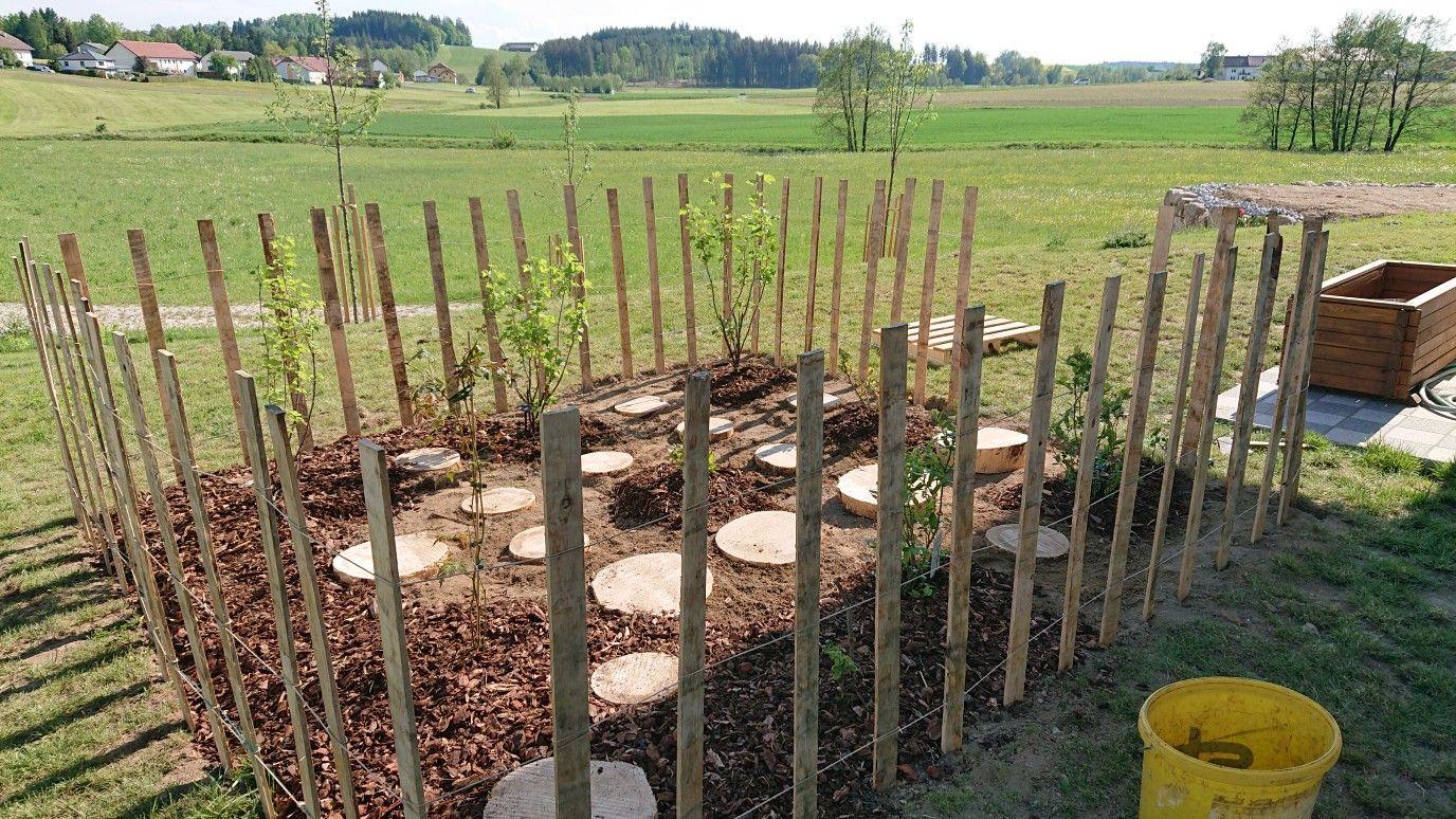 Beerengarten Garten Garten Ideen Beeren