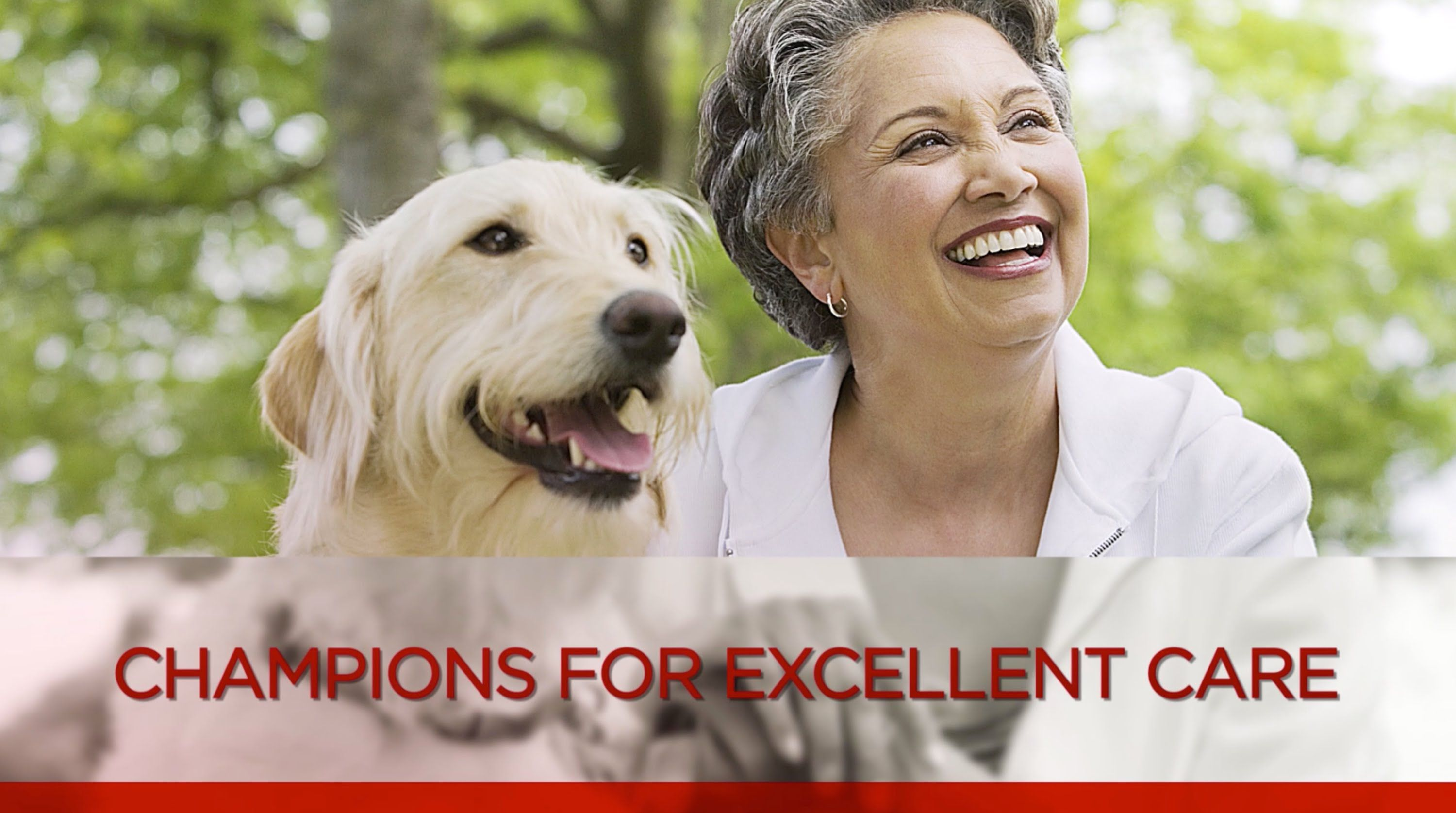 What makes a veterinary practice AAHA Accredited? (With