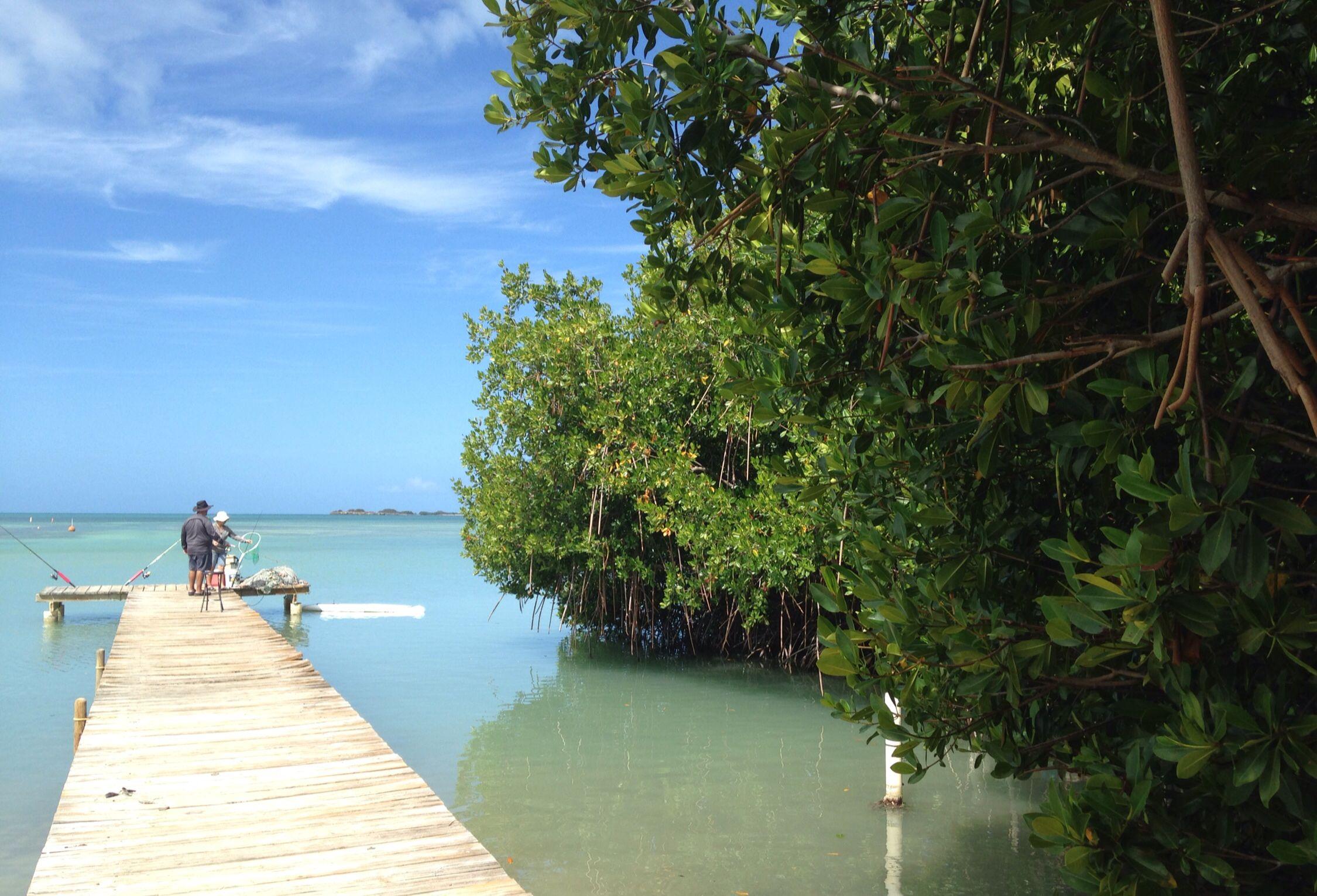 Bahía Salina en Cabo Rojo PR