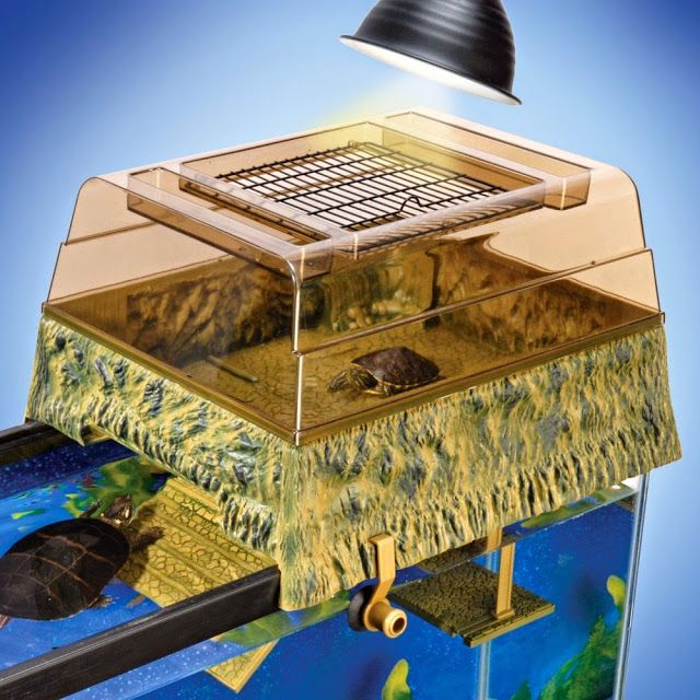♥ Pet Turtle ♥ Turtle topper above tank basking platform. An attractive solution to getting your turtle the out of water time he needs while keeping him safe.