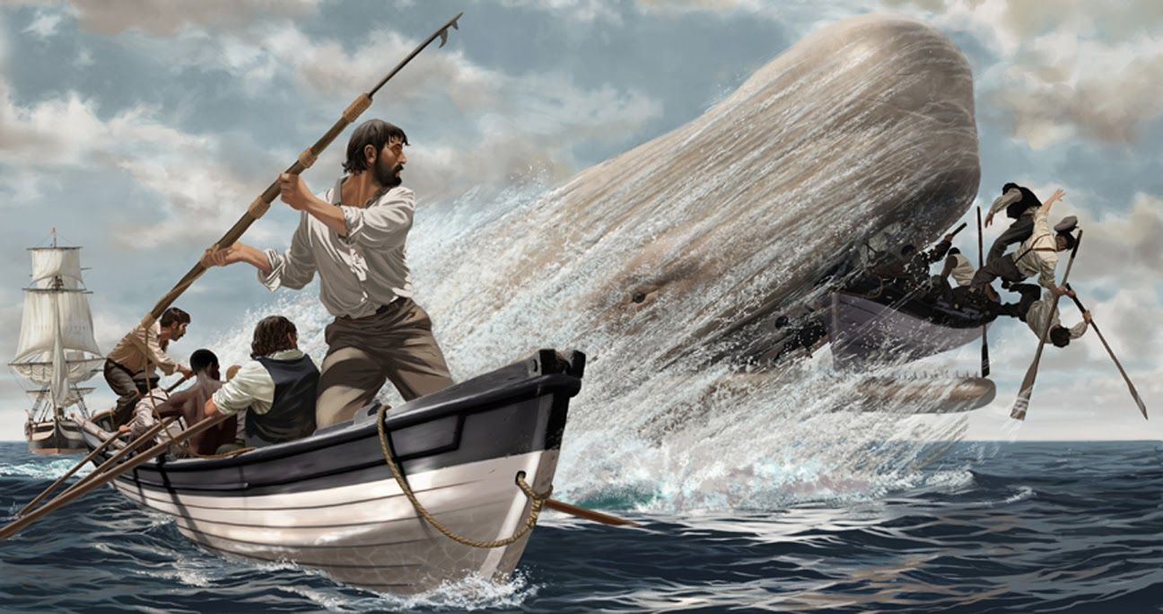 Bizzaro Book Review: Moby Dick by Herman Melville - Human Echoes